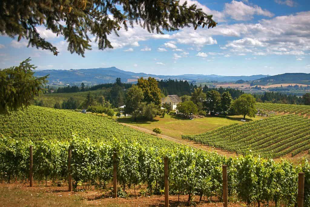 Wilamette Valley courtesy of Visit Portland