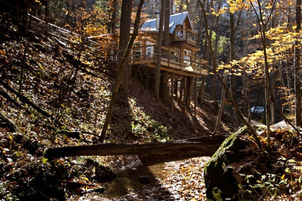 Sugar Creek Treehouse Asheville NC view from creek with treehouse above