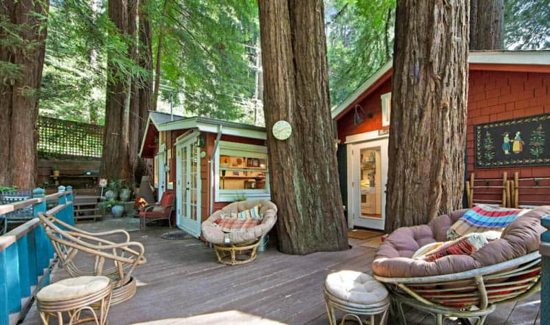 Deck and cabin with large trees