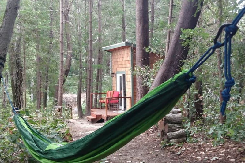 redwoods tiny home bay area view of the tiny home and hammock with trees and chairs on the small porch