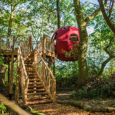 Brook House Woods Goji glamping pod view of the red pod in the trees with stairs going up to it