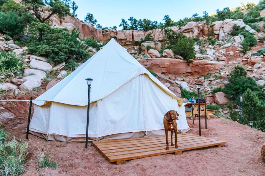 zion glamping adventures tent with view of front of tent with dog on a deck and rock cliff in the background