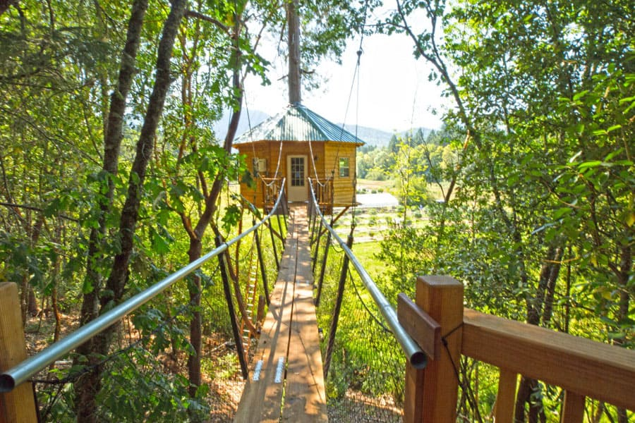 TokinTree Eco Camping Treehouse view from bridge